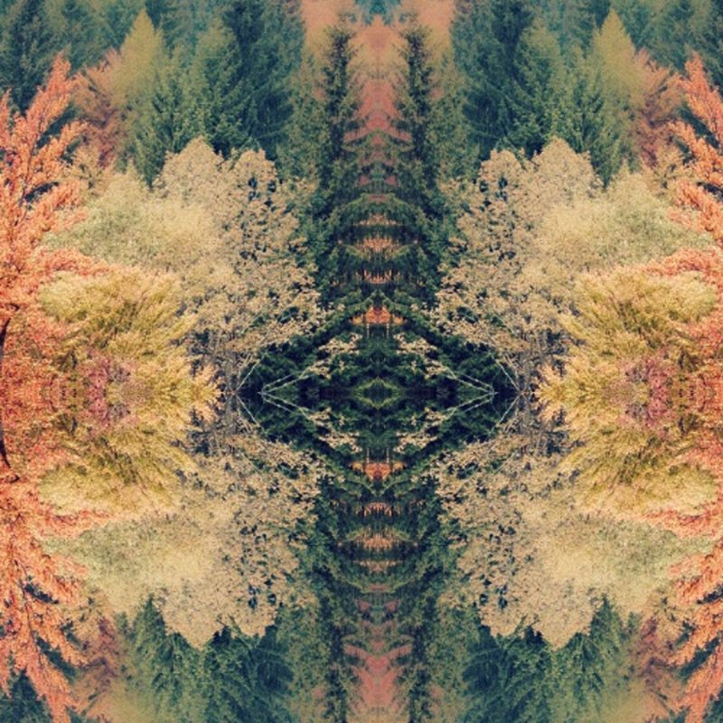 10 New Tame Impala Innerspeaker Wallpaper FULL HD 1920×1080 For PC Desktop 2018 free download treesandreia lemos inspiredthe tame impala albums artwork 800x800