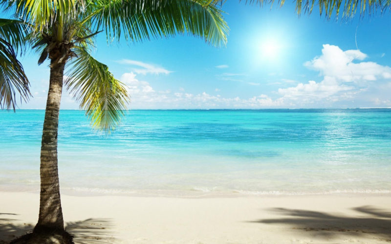 10 Best Beach Background Pictures FULL HD 1080p For PC Desktop 2020 free download tropical beach background wallpaper 1920x1200 6783 tropical 800x500