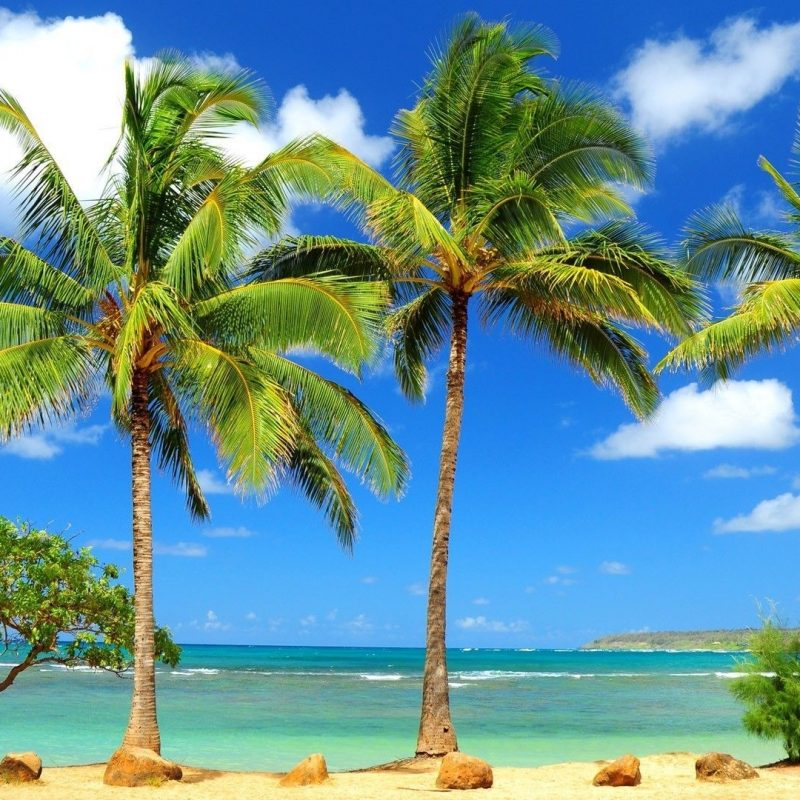 10 Best Tropical Beach Desktop Backgrounds FULL HD 1920×1080 For PC Desktop 2018 free download tropical beach desktop wallpaper hd images full paradise widescreen 800x800