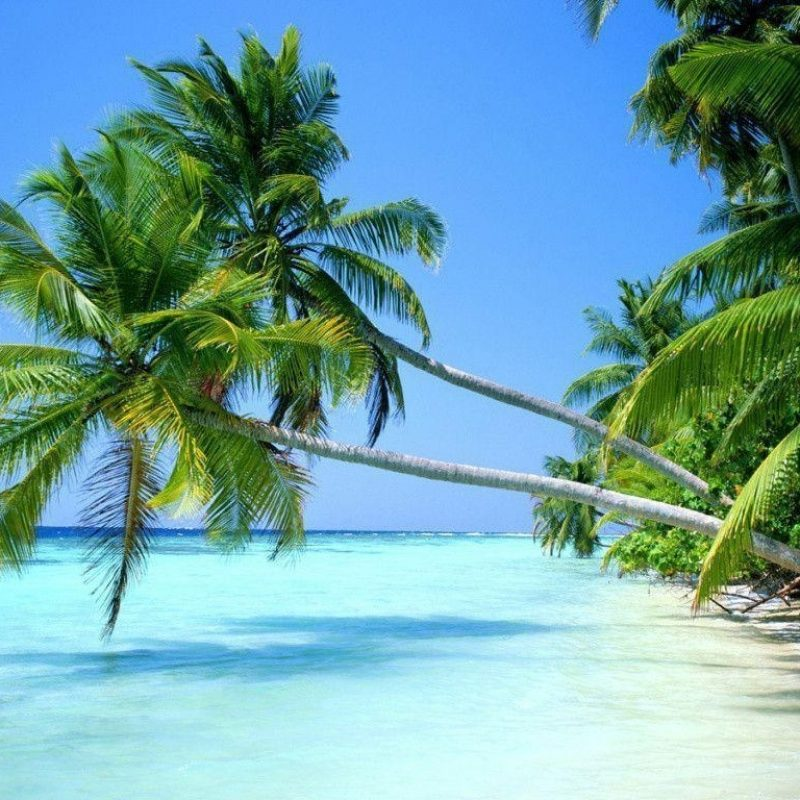 10 Best Tropical Beach Desktop Backgrounds FULL HD 1920×1080 For PC Desktop 2018 free download tropical beach desktop wallpapers wallpaper cave 800x800