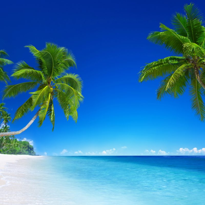 10 Best Tropical Beach Wallpaper Desktop FULL HD 1080p For PC Desktop 2020 free download tropical beach paradise 5k wallpapers hd wallpapers id 18455 800x800