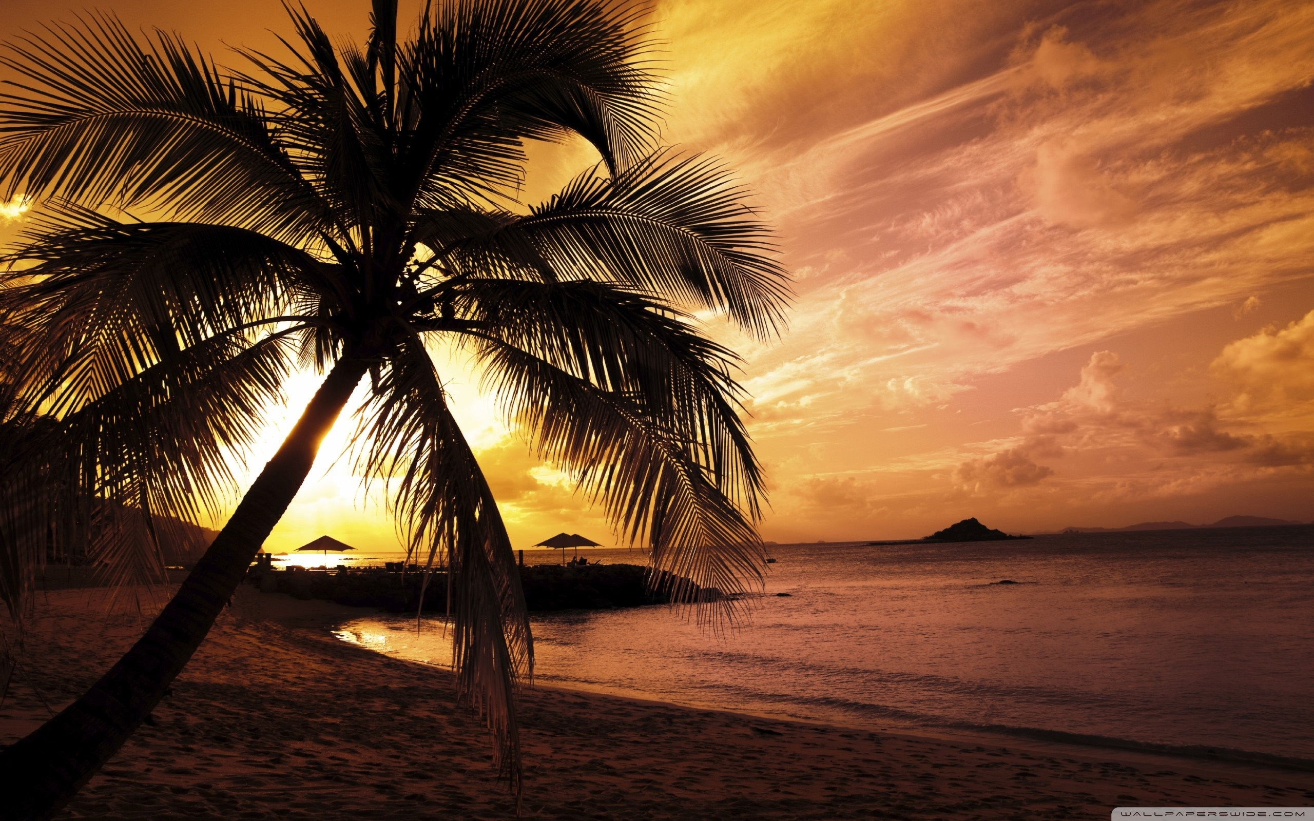 tropical beach sunset ❤ 4k hd desktop wallpaper for 4k ultra hd tv