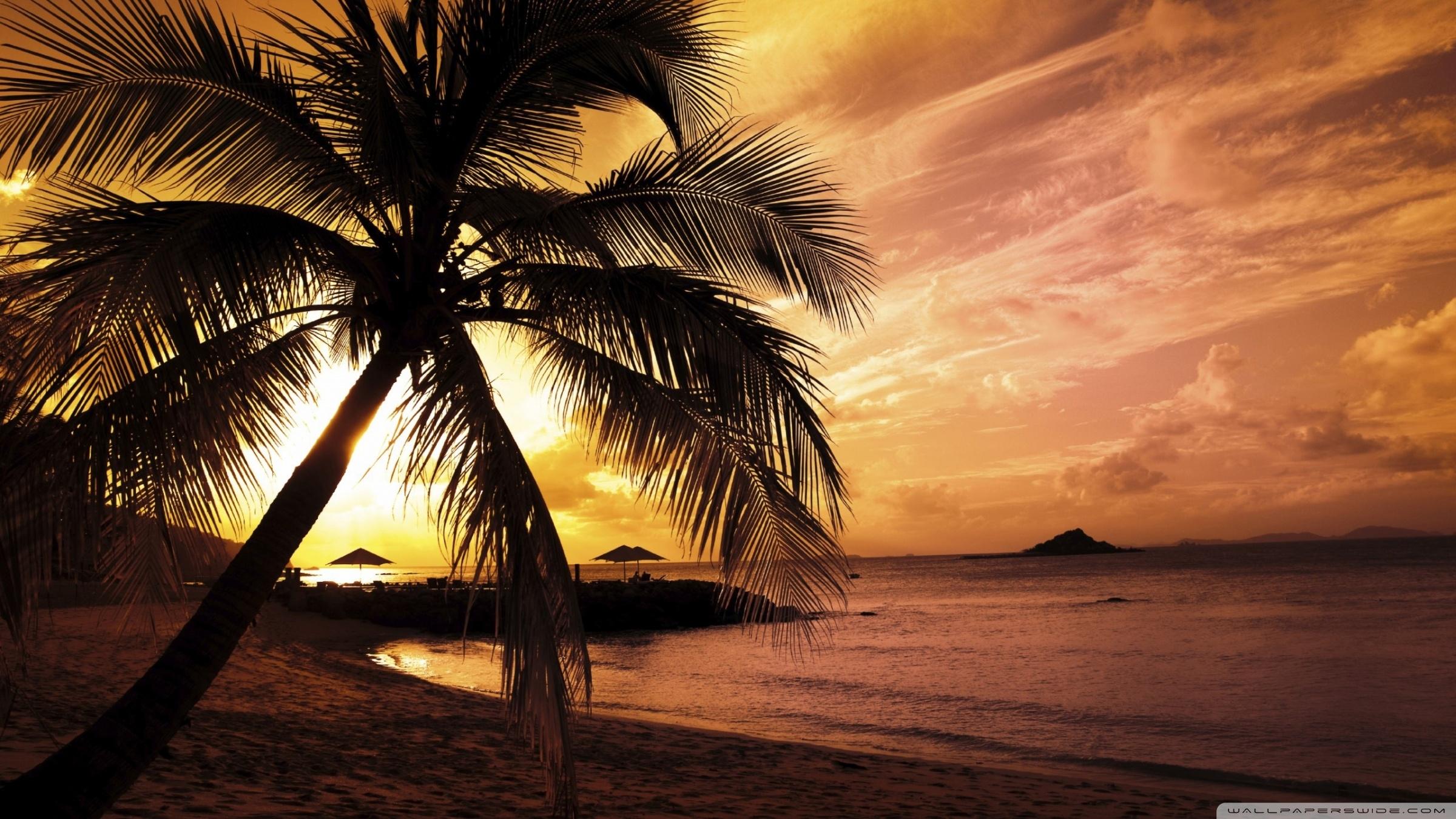 tropical beach sunset ❤ 4k hd desktop wallpaper for 4k ultra hd