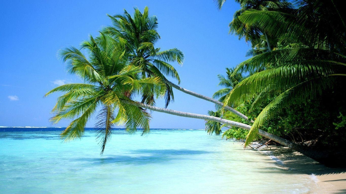 10 Best Tropical Beach Wallpaper Desktop FULL HD 1080p For PC Desktop