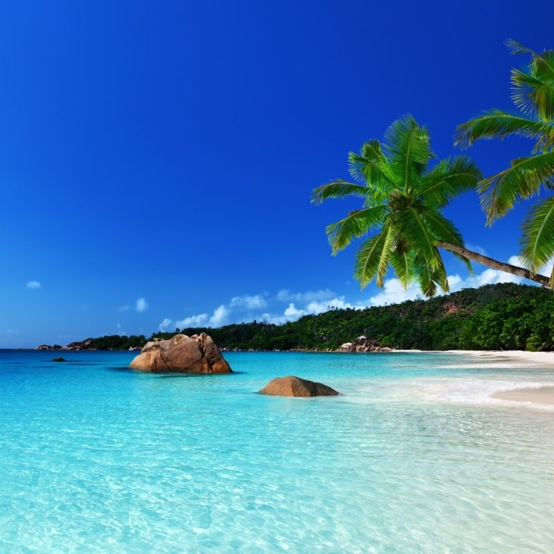 10 Best Tropical Island Wallpaper Hd FULL HD 1080p For PC Background 2020 free download tropical island full hd fond decran and arriere plan 1920x1200 800x800