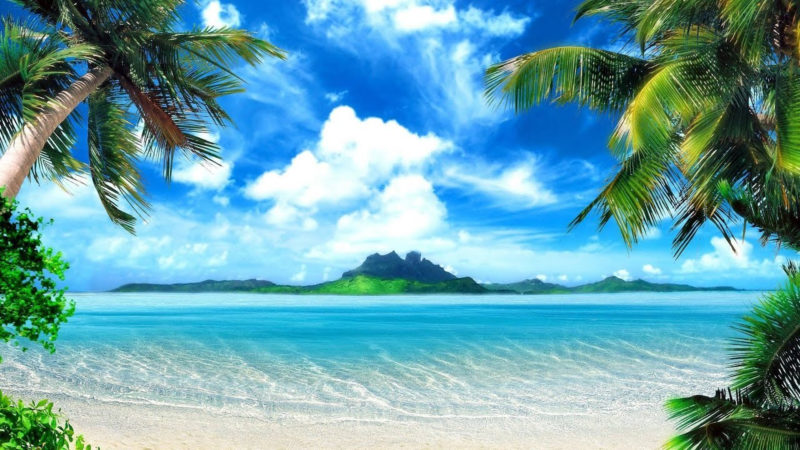 10 New Palm Tree And Beach Pictures FULL HD 1080p For PC Background 2018 free download tropical island music palm tree beach youtube 800x450