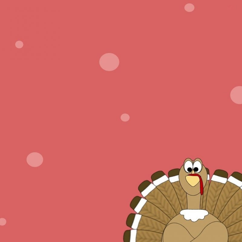 10 Latest Thanksgiving Turkey Wallpaper Hd FULL HD 1920×1080 For PC Desktop 2018 free download turkey wallpapers free group 69 800x800
