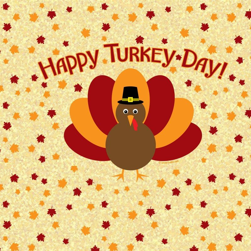 10 Latest Thanksgiving Turkey Wallpaper Hd FULL HD 1920×1080 For PC Desktop 2020 free download turkey wallpapers thanksgiving wallpaper cave 800x800
