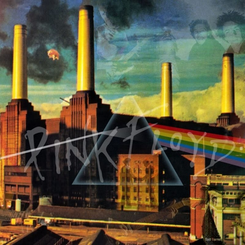 10 Most Popular Pink Floyd Animals Wallpaper FULL HD 1920×1080 For PC Background 2018 free download unique pink floyd animals iphone 6 wallpaper design anime wallpaper hd 800x800