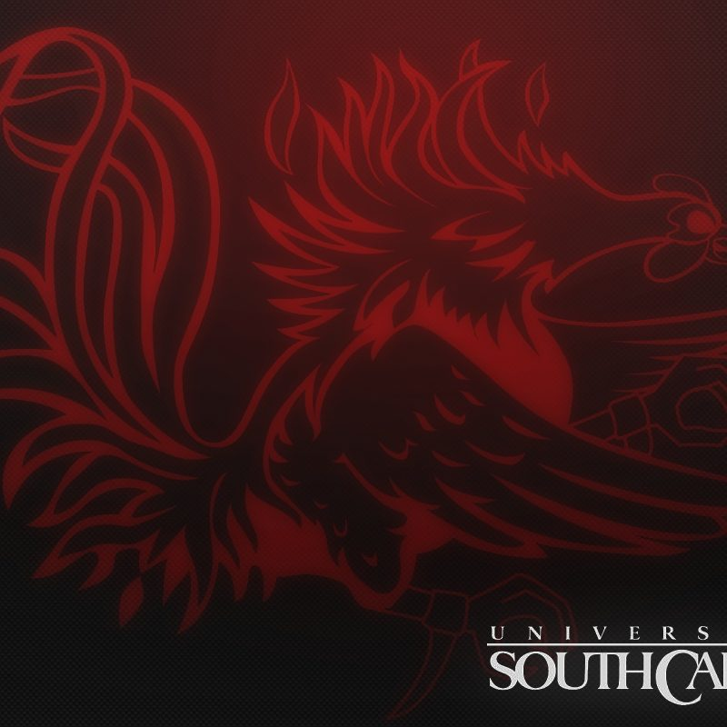 10 Best University Of South Carolina Wallpaper FULL HD 1080p For PC Desktop 2018 free download university of south carolina screensavers south carolina gamecocks 800x800