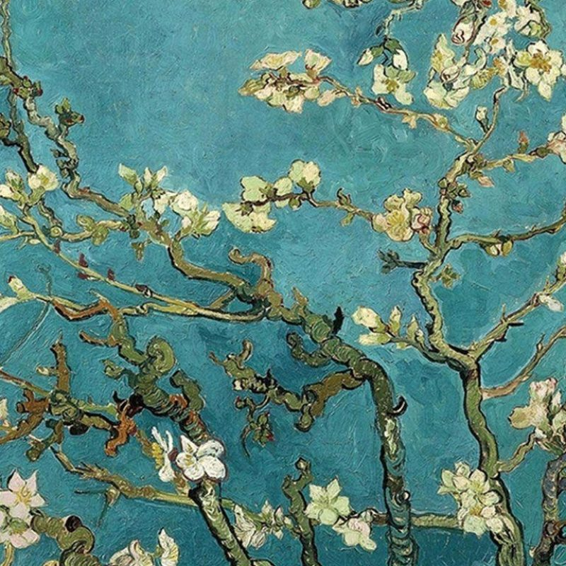 10 New Van Gogh Almond Blossoms Wallpaper FULL HD 1920×1080 For PC Background 2018 free download van gogh blossom wallpapers wallpaper cave 800x800