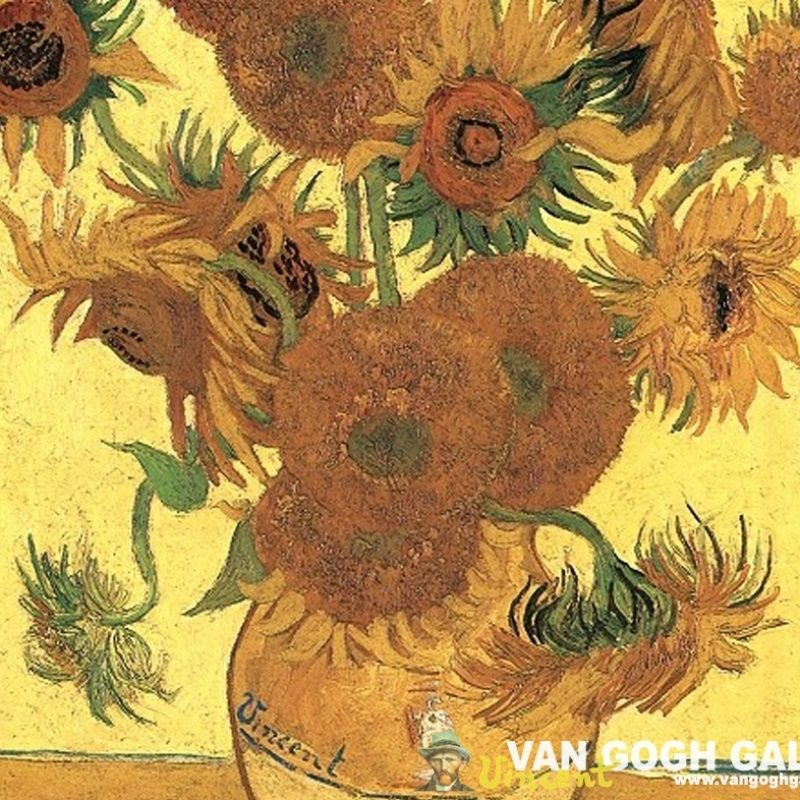 10 Best Van Gogh Sunflowers Wallpaper FULL HD 1080p For PC Background 2018 free download van gogh sunflowers wallpaper sunflowers desktop wallpaper van 800x800