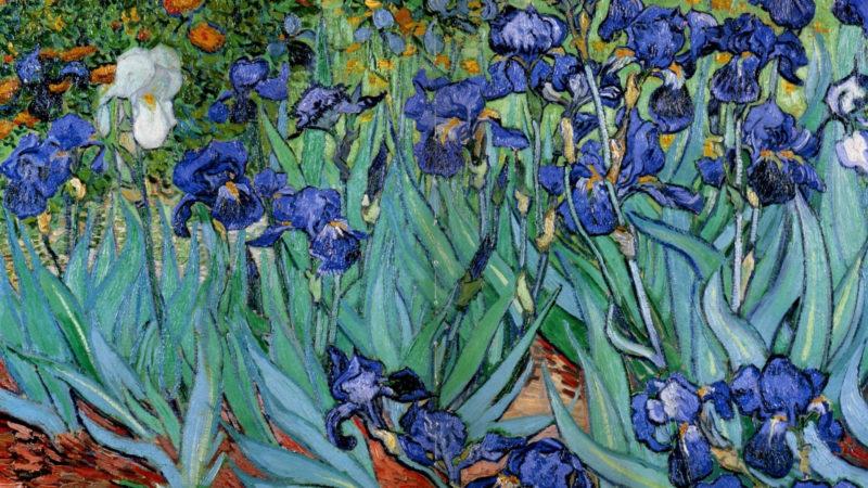 10 Latest Van Gogh Desktop Background FULL HD 1080p For PC Background 2018 free download van gogh wallpapers top free van gogh backgrounds wallpaperaccess 800x450
