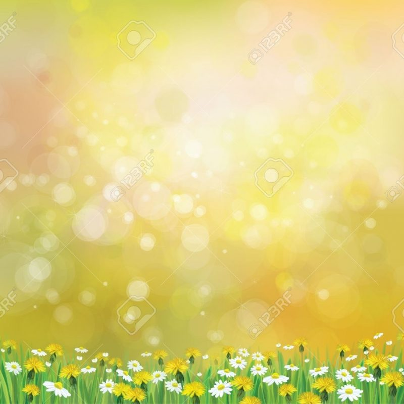 10 Best Free Spring Background Images FULL HD 1080p For PC Desktop 2018 free download vector nature spring background with chamomile and dandelions 800x800
