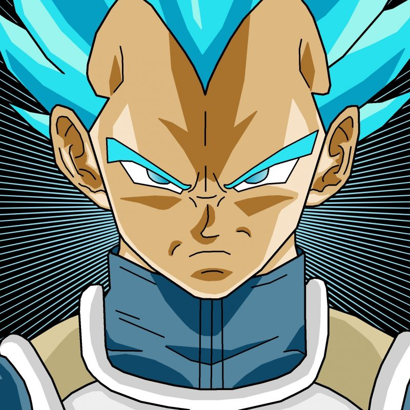 10 Top Vegeta Super Saiyan Wallpaper FULL HD 1080p For PC Background 2018 free download vegeta super saiyan god wallpaper 61 images 1 800x800
