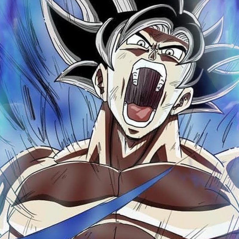 10 Best Goku Goes Ultra Instinct FULL HD 1080p For PC Desktop 2020 free download vegeta ultrainstincts is it possible animevers 800x800