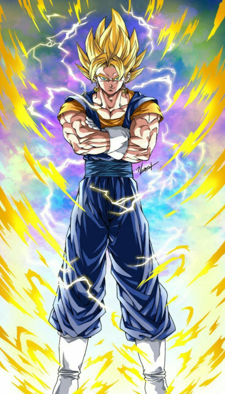 10 Most Popular Dragon Ball Z Picters FULL HD 1080p For PC Background 2018 free download vegetto ssj visit now for 3d dragon ball z compression shirts now 456x800