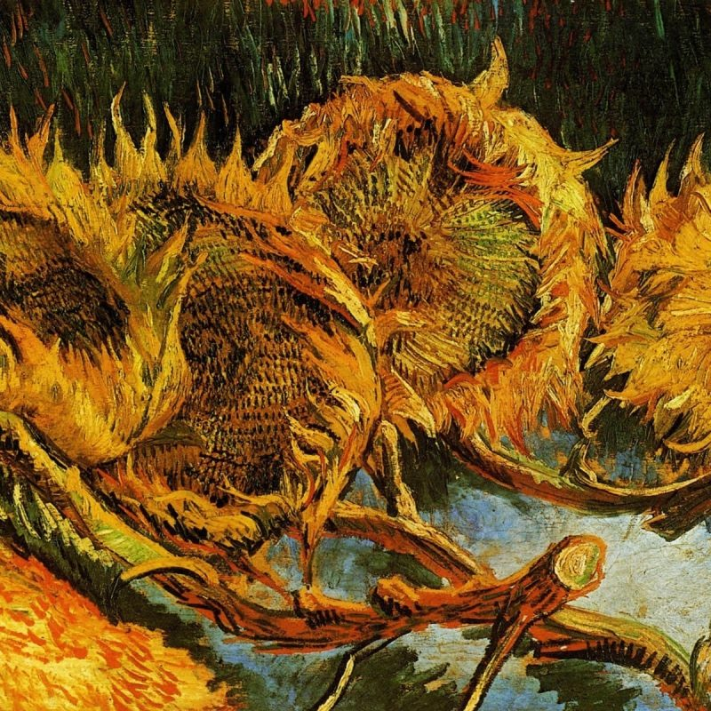 10 Best Van Gogh Sunflowers Wallpaper FULL HD 1080p For PC Background 2018 free download vincent van oeuvre gogh peintures tournesols papier peint 800x800