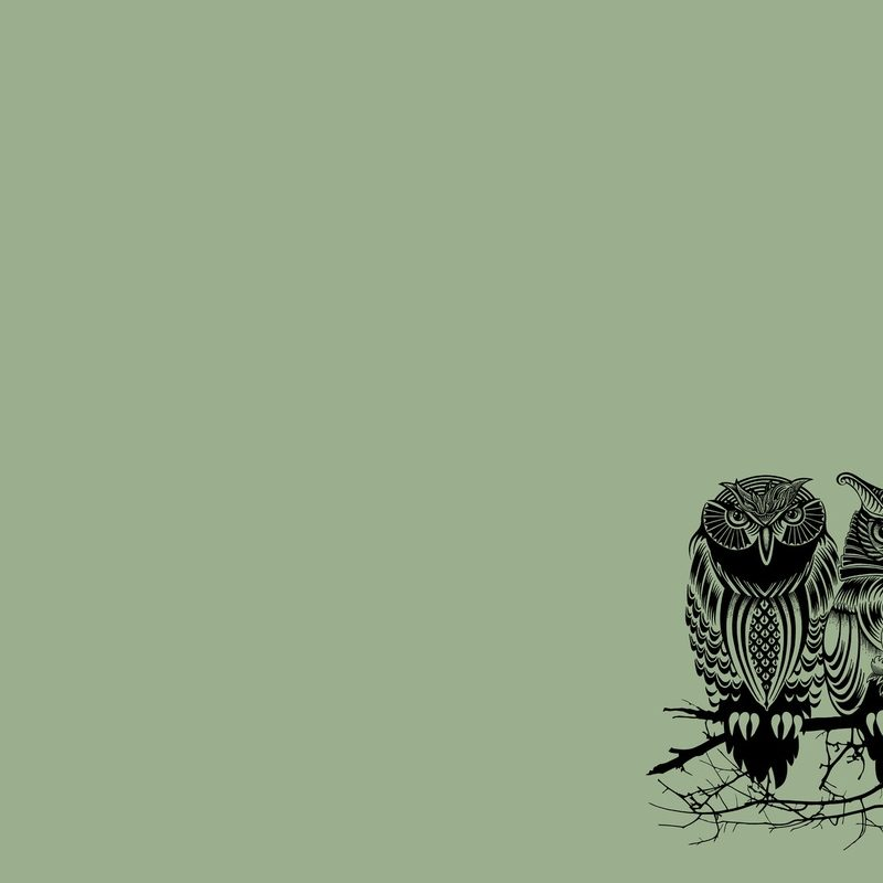 10 Top Owl Art Desktop Wallpaper FULL HD 1920×1080 For PC Desktop 2018 free download vintage owl desktop wallpaper 20556 baltana 800x800