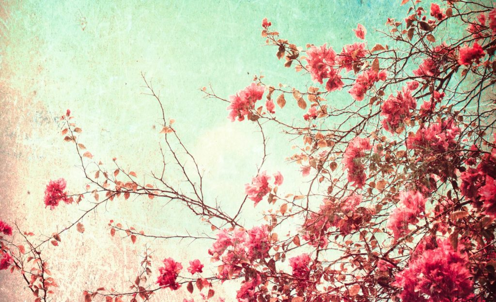 10 Latest Vintage Spring Desktop Background FULL HD 1080p For PC Desktop 2020 free download vintage pc wallpaper top backgrounds wallpapers 1024x623