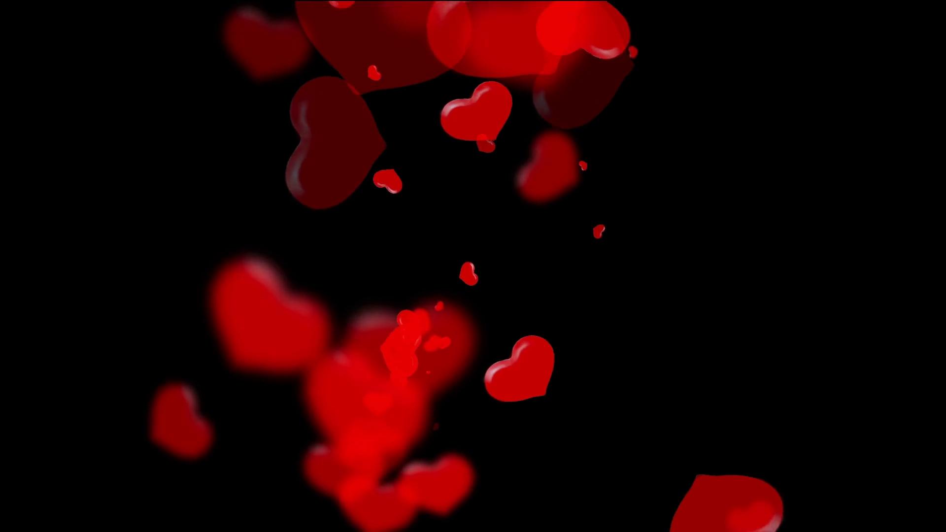 vivid translucent red hearts on black background, valentine's day