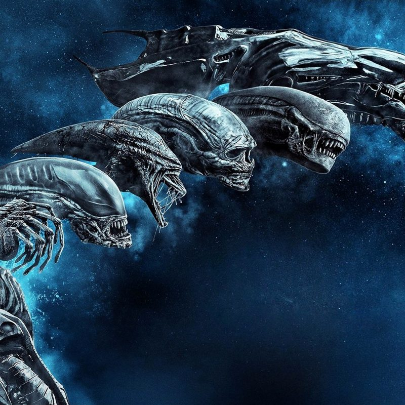 10 Most Popular Alien Covenant Wallpaper Hd FULL HD 1080p For PC Desktop 2018 free download wallpaper alien covenant blu ray cover hd movies 9027 1 800x800