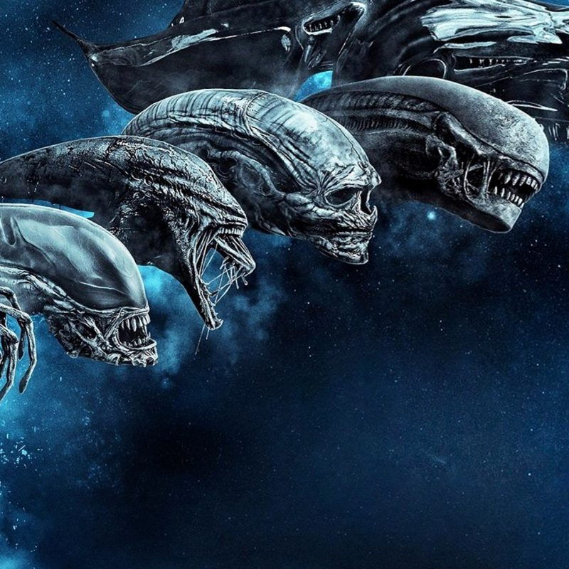 10 Best Alien Covenant Hd Wallpaper FULL HD 1080p For PC Desktop 2018 free download wallpaper alien covenant blu ray cover hd movies 9027 800x800