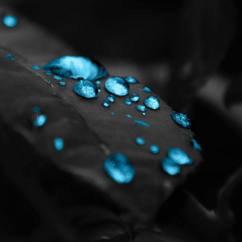 10 Latest Hd Blue And Black Wallpaper FULL HD 1080p For PC Desktop 2018 free download wallpaper blue drops in a black leaf 1920 x 1080 full hd 1920 x 800x800