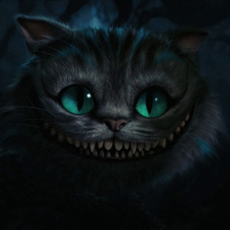 10 Top Cheshire Cat Wallpaper Hd FULL HD 1080p For PC Background 2018 free download wallpaper cheshire cat movies whiskers alice in wonderland 800x800