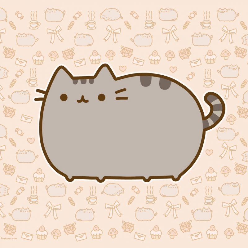 10 Top Pusheen The Cat Wallpaper Desktop FULL HD 1080p For PC Desktop 2018 free download wallpaper for ipad pusheen pusheen the cat pinterest pusheen 1 800x800