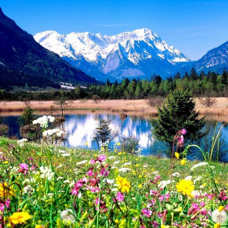 10 Best Spring Pictures For Desktop FULL HD 1920×1080 For PC Desktop 2018 free download wallpaper for spring background full hd high quality desktop 800x800