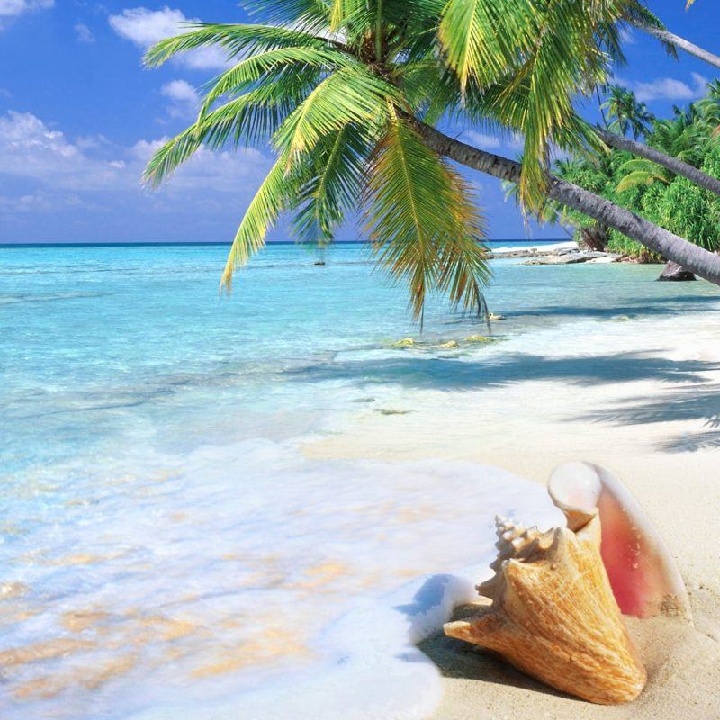 10 Best Tropical Beach Wallpaper Desktop FULL HD 1080p For PC Desktop 2020 free download %name