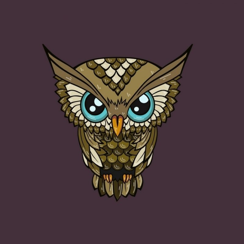 10 Top Owl Art Desktop Wallpaper FULL HD 1920×1080 For PC Desktop 2018 free download wallpaper owl minimalism art hd picture image 800x800