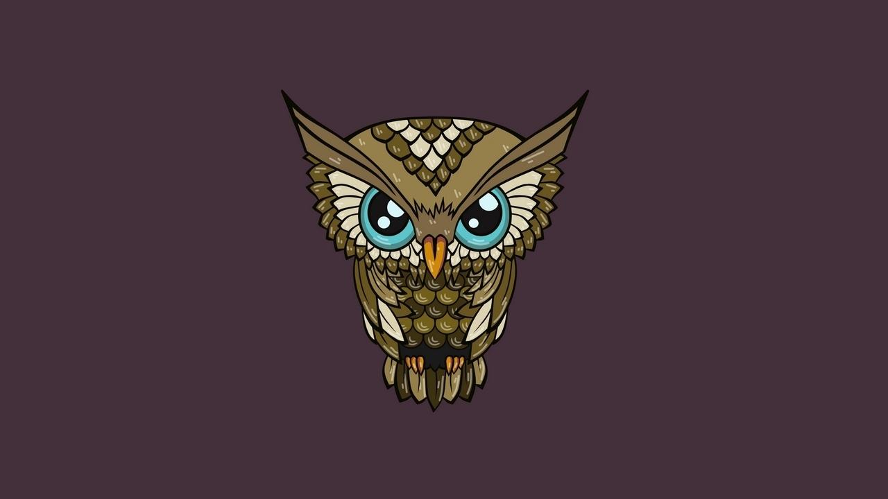 wallpaper owl, minimalism, art hd, picture, image