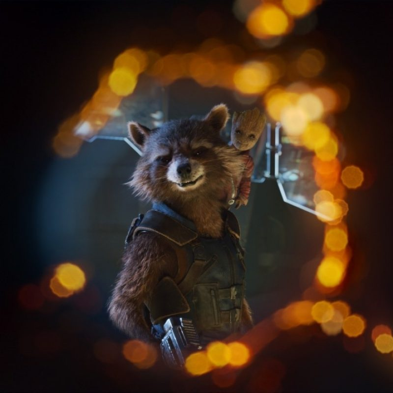10 Most Popular Rocket And Groot Wallpaper FULL HD 1080p For PC Desktop 2018 free download wallpaper rocket raccoon baby groot guardians of the galaxy vol 2 800x800