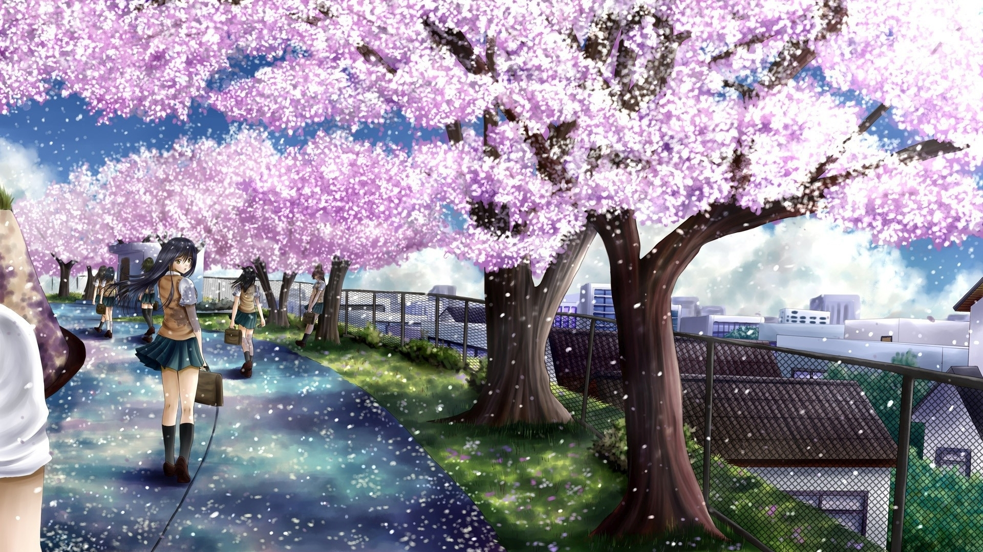 Title Wallpaperwiki Anime Cherry Blossom Full Hd Wallpaper Pic Wpc0012431 Dimension 1920 X 1080 File Type JPG JPEG