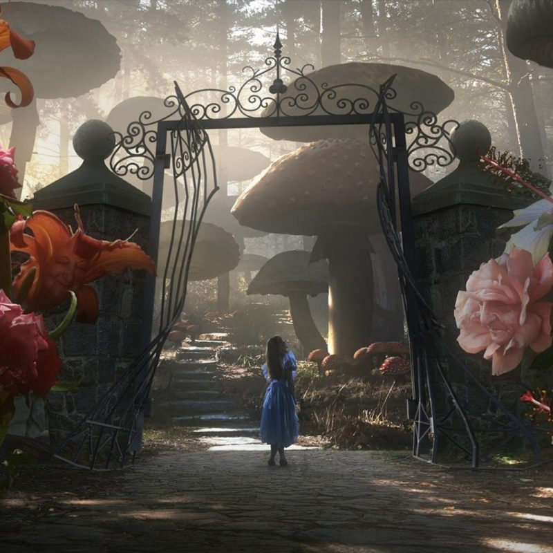 10 Latest Alice In Wonderland Hd Wallpapers FULL HD 1080p For PC Background 2018 free download wallpaper wiki download free alice in wonderland image pic wpc002171 800x800
