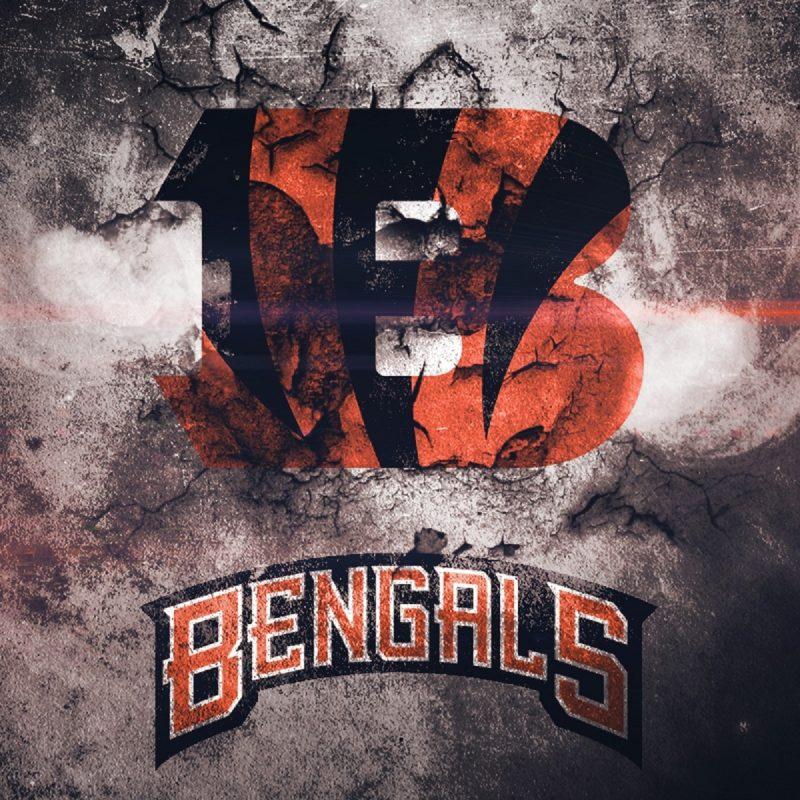10 Most Popular Cincinnati Bengals Hd Wallpaper FULL HD 1080p For PC Background 2020 free download wallpaper wiki hd cincinnati bengals background pic wpb008493 800x800