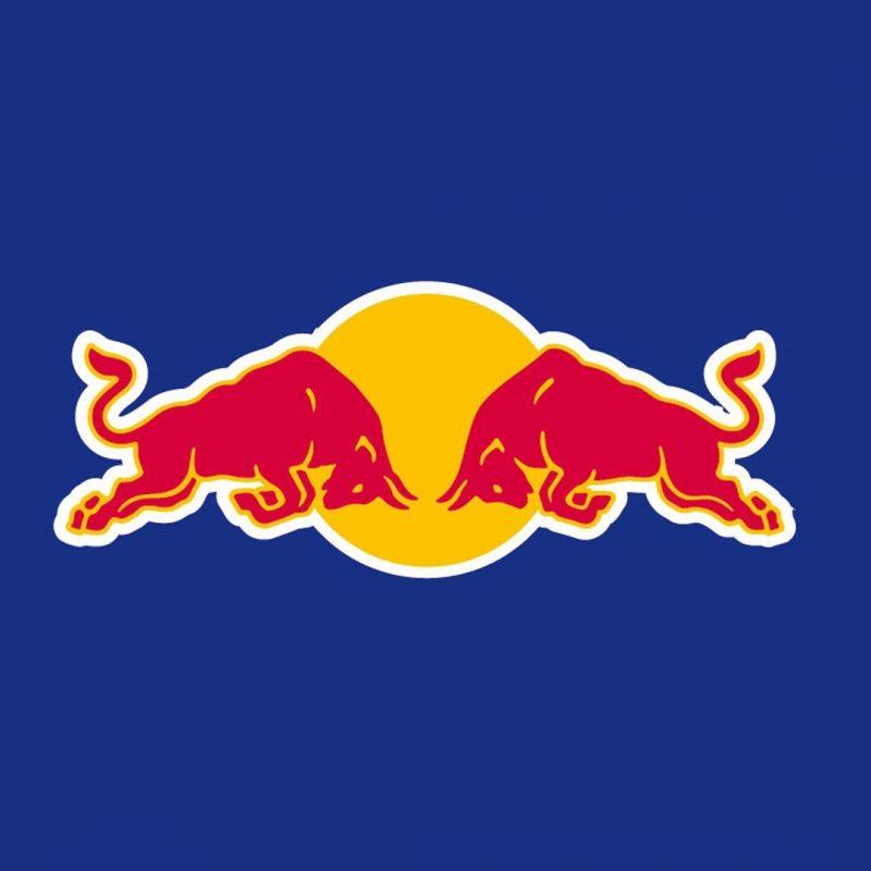 10 Latest Red Bull Logo Wallpaper FULL HD 1080p For PC Background 2018 free download wallpaper wiki red bull logo desktop wallpaper pic wpd005155 800x800