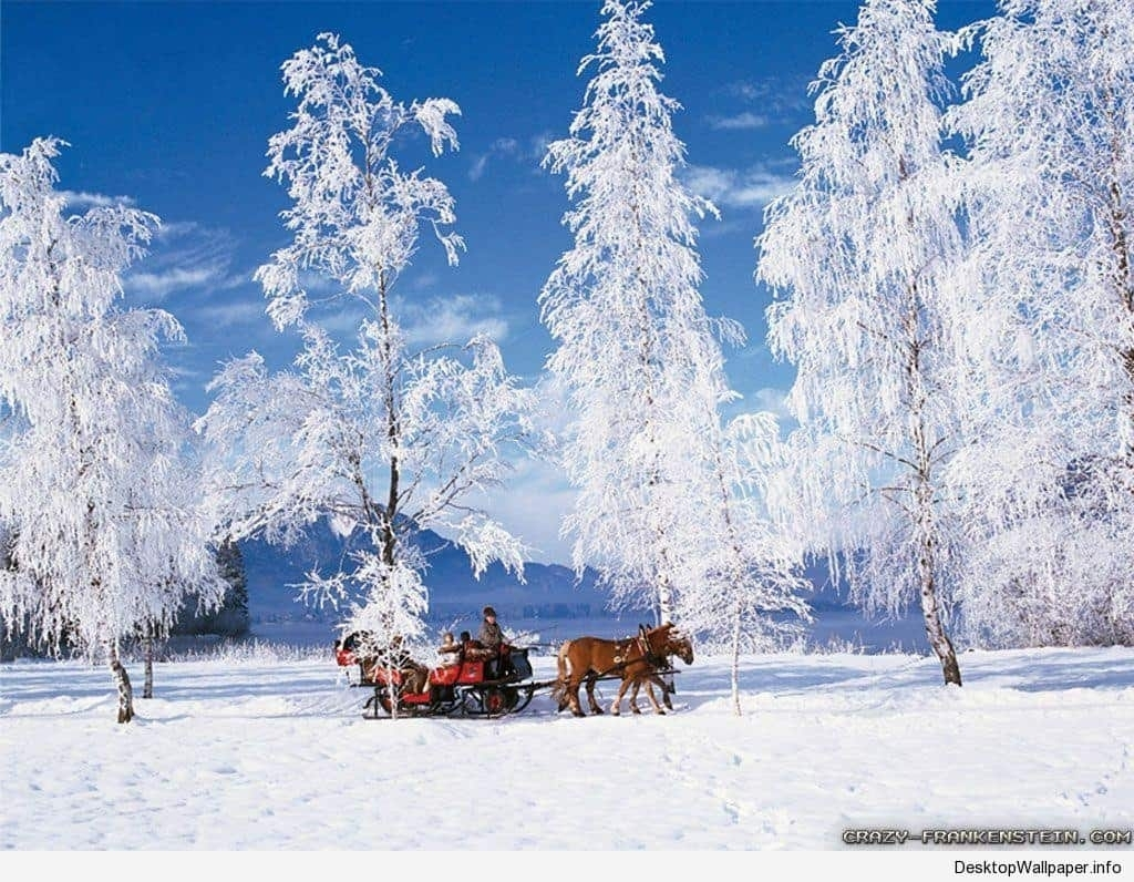 wallpaper winter scenes | desktop wallpapers