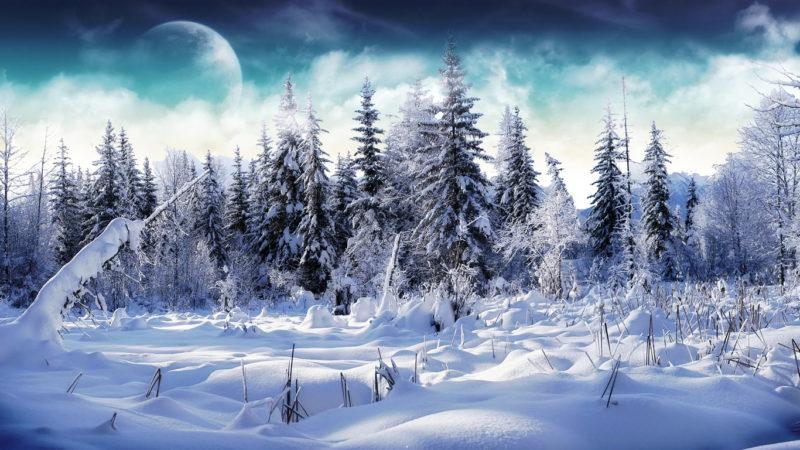 10 New Winter Scene Wallpapers Free FULL HD 1080p For PC Desktop 2020 free download wallpaper winter scenes sf wallpaper 800x450