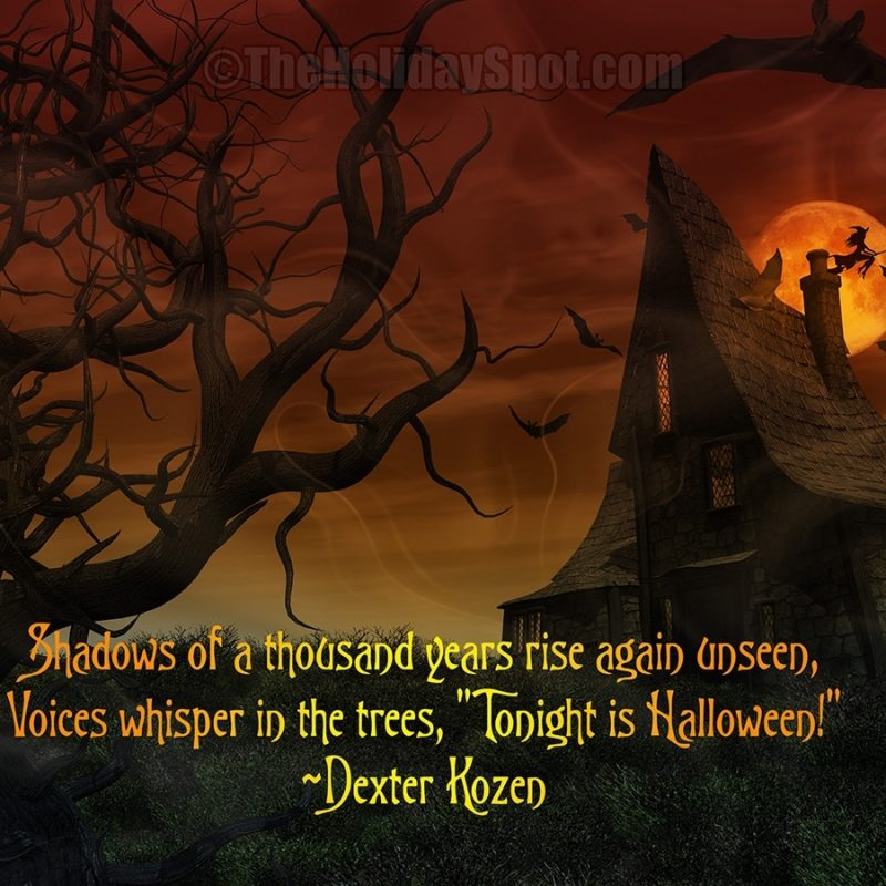 10 Best Free Halloween Desktop Background FULL HD 1080p For PC Desktop 2021 free download wallpapers 1 800x800