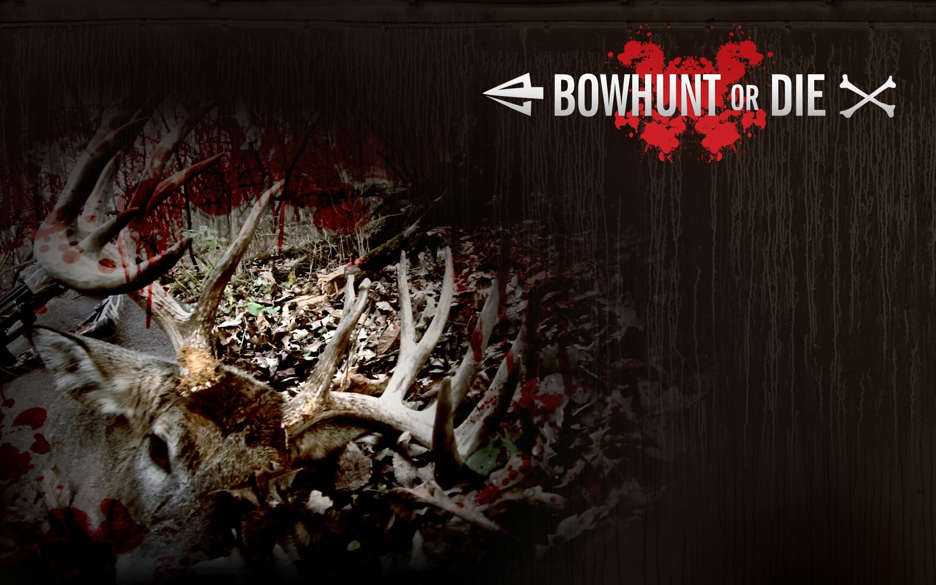 wallpapers archive | bowhunting