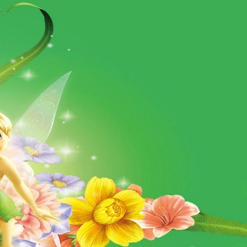 10 Latest Tinker Bell Wall Paper FULL HD 1080p For PC Desktop 2020 free download wallpapers collection tinker bell wallpapers 800x800