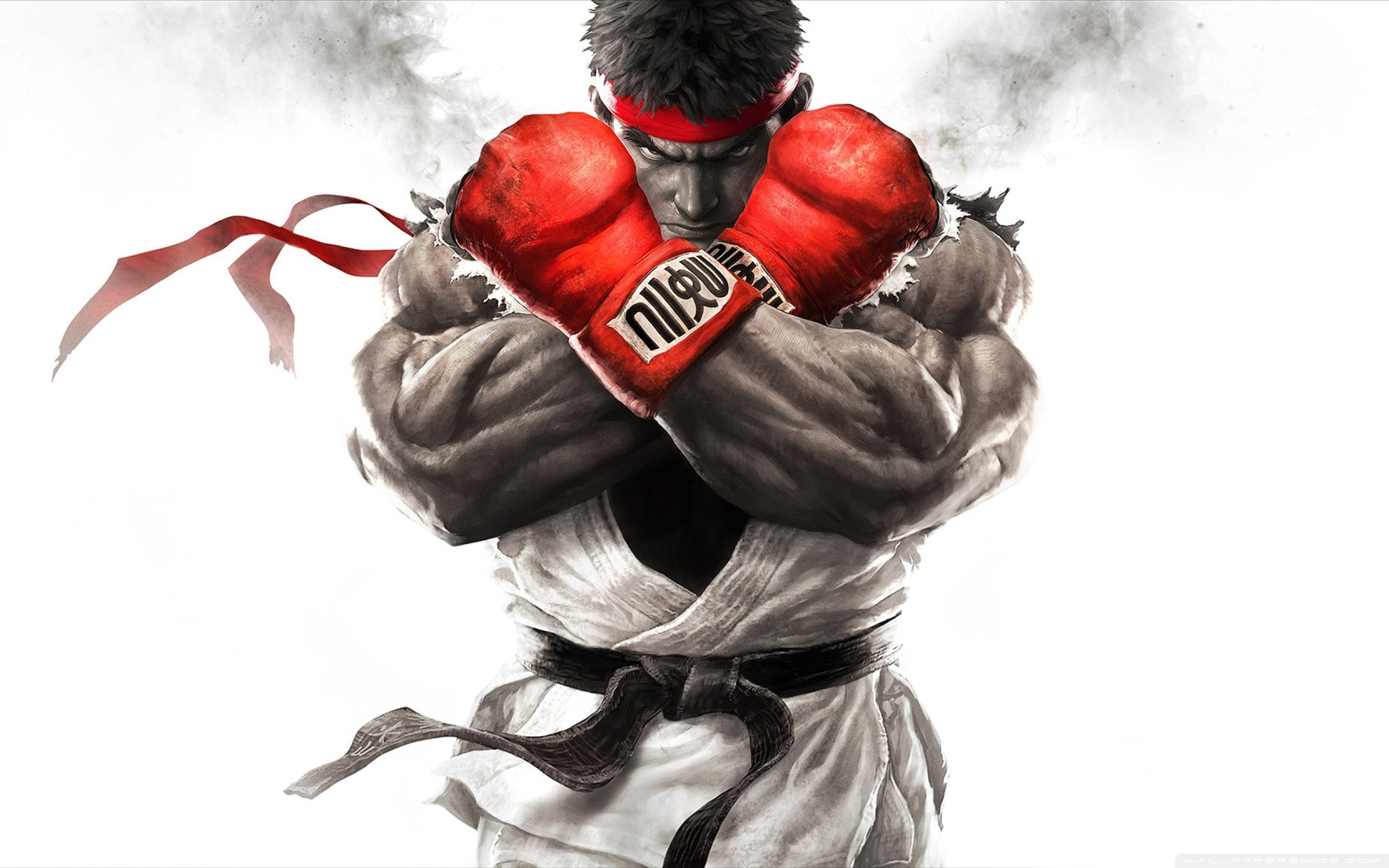 10 New Street Fighter Hd Wallpapers FULL HD 1920×1080 For PC Background