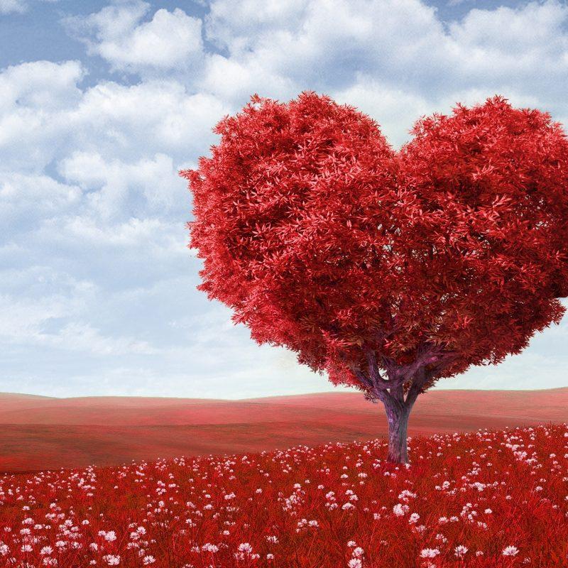 10 Most Popular Valentine Wallpaper For Desktop FULL HD 1080p For PC Desktop 2020 free download wallpaperswide e29da4 valentines day hd desktop wallpapers for 4k 800x800