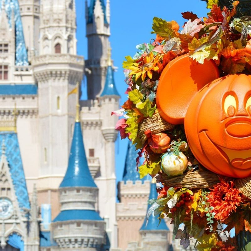 10 Top Disney World Halloween Desktop Background FULL HD 1080p For PC Background 2018 free download walt disney world resort wallpaper for desktop laptop and 800x800