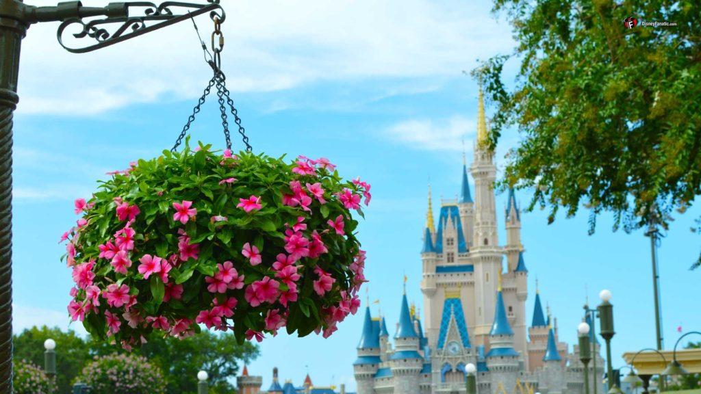 10 Best Disney World Hd Wallpaper FULL HD 1080p For PC Desktop 2020 free download walt disney world resort wallpaper for desktop laptop and smartphones 1024x576