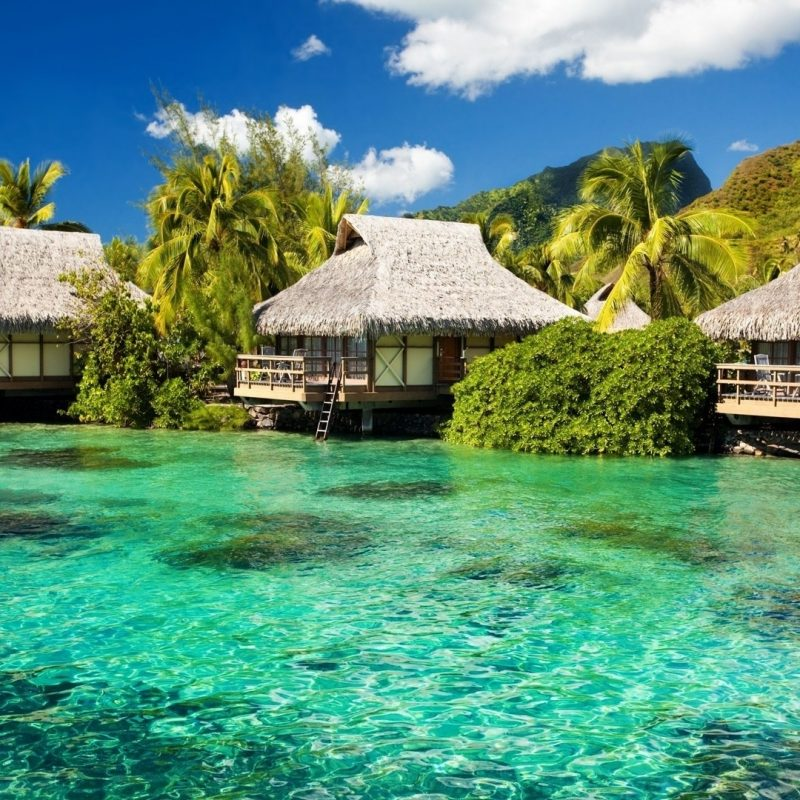 10 Best Tropical Island Wallpaper Hd FULL HD 1080p For PC Background 2020 free download water bungalows on a tropical island e29da4 4k hd desktop wallpaper for 800x800