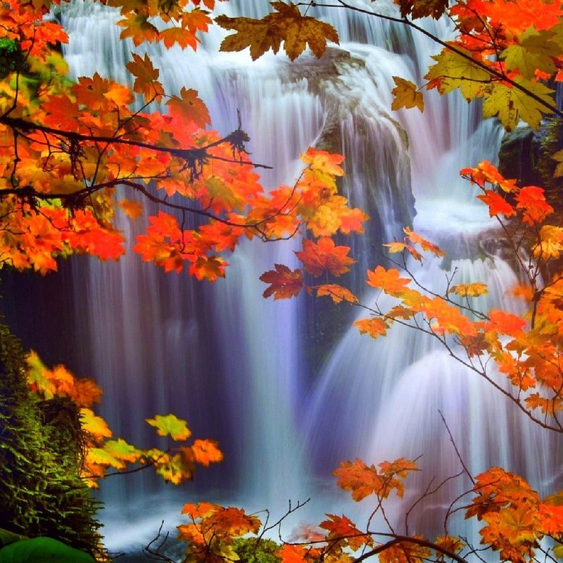10 Best Beautiful Fall Scenery Images FULL HD 1080p For PC Desktop 2018 free download waterfalls colors love autumn attractions landscapes four pre 1 800x800